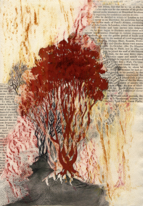 Tree Collage-Raphaela-Mazzone