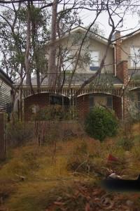 house-bush-c1small